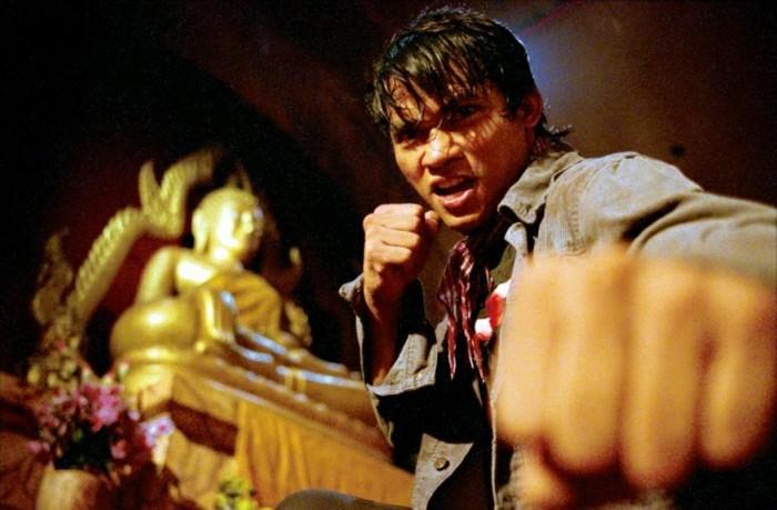 meilleur-film-art-martiaux-meilleur-film-de-combat-film-art-martiaux-streaming