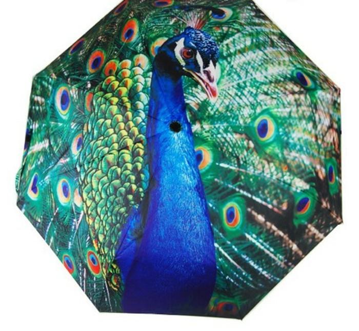 parapluie-pliant-beaute-de-la-nature-resized