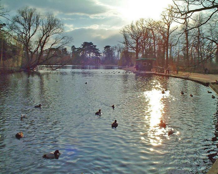 parc-floral-de-vincennes-joli-lac-dans-le-parc-Vincennes