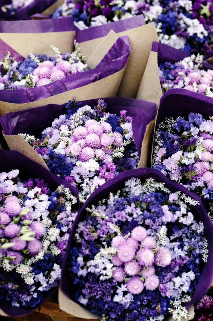 paysage-fleuri-printemps-image-fond-d-écran-trop-jolie-la-nature-bouquets