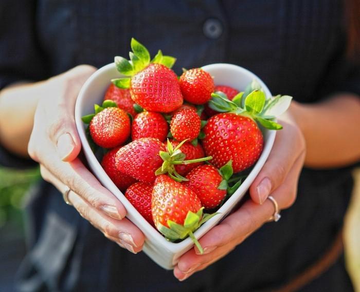 recette-rouleau-de-printemps-la-nature-qui-étonne-avec-sa-beauté-photo-fraises