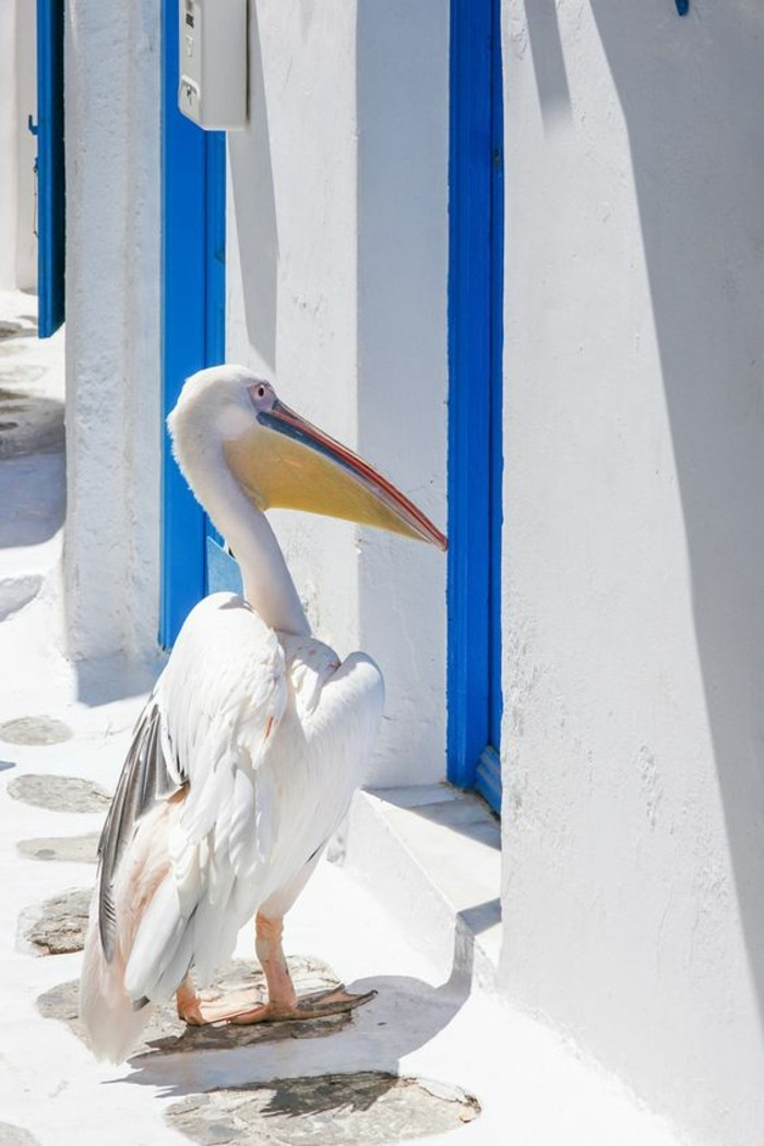 voyage-mykonos-all-inclusive-europe-top-places-cool-idee-pelican