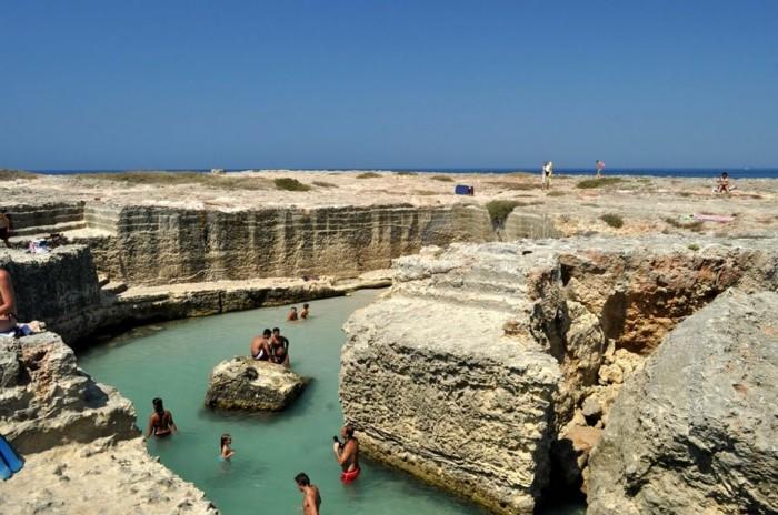 Piscine-bassin-naturel-piscine-en-pierre-naturelle