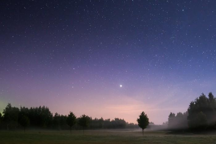 a-belle-idée-stellarium-regarder-les-étoiles-nature