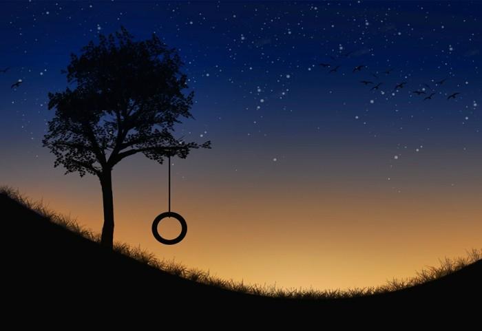 a-la-belle-idée-stellarium-regarder-les-étoiles-nature-été