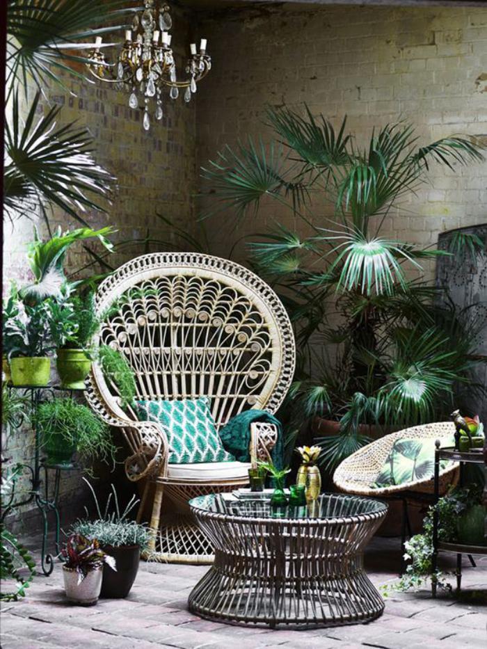 aménagement-extérieur-plusieurs-plantes-vertes-exotiques