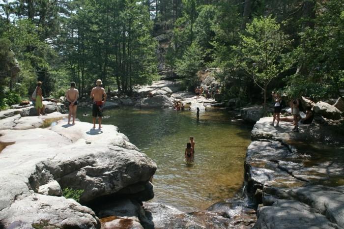 camping-avec-piscine-naturelle-piscine-filtration-naturelle
