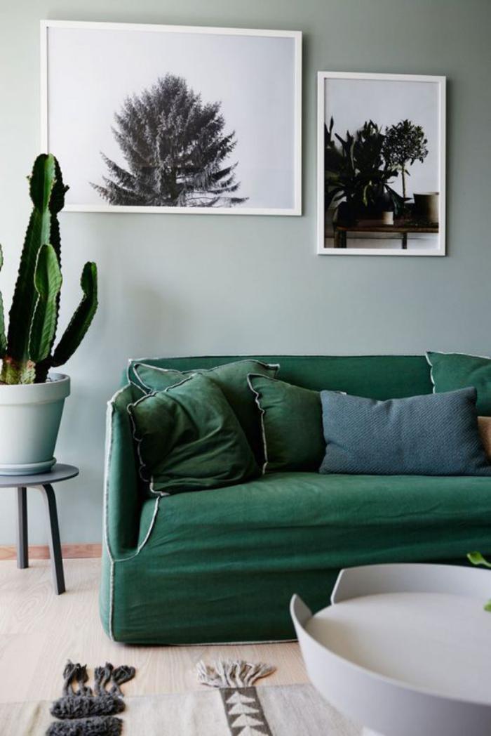 canapé-vert-confortable-pot-de-fleurs-photographies