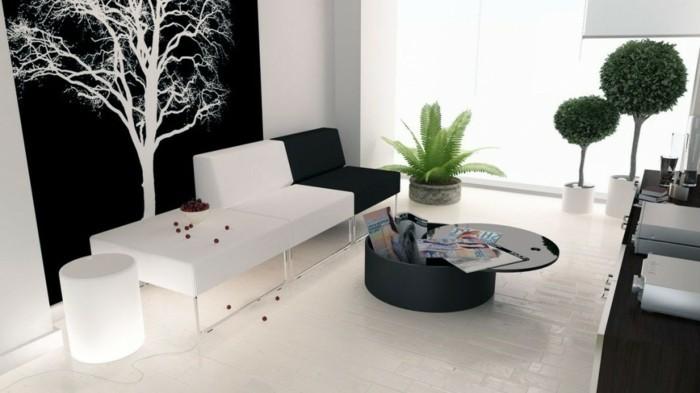 chambre-noire-et-blanche-décoration-chambre-adulte
