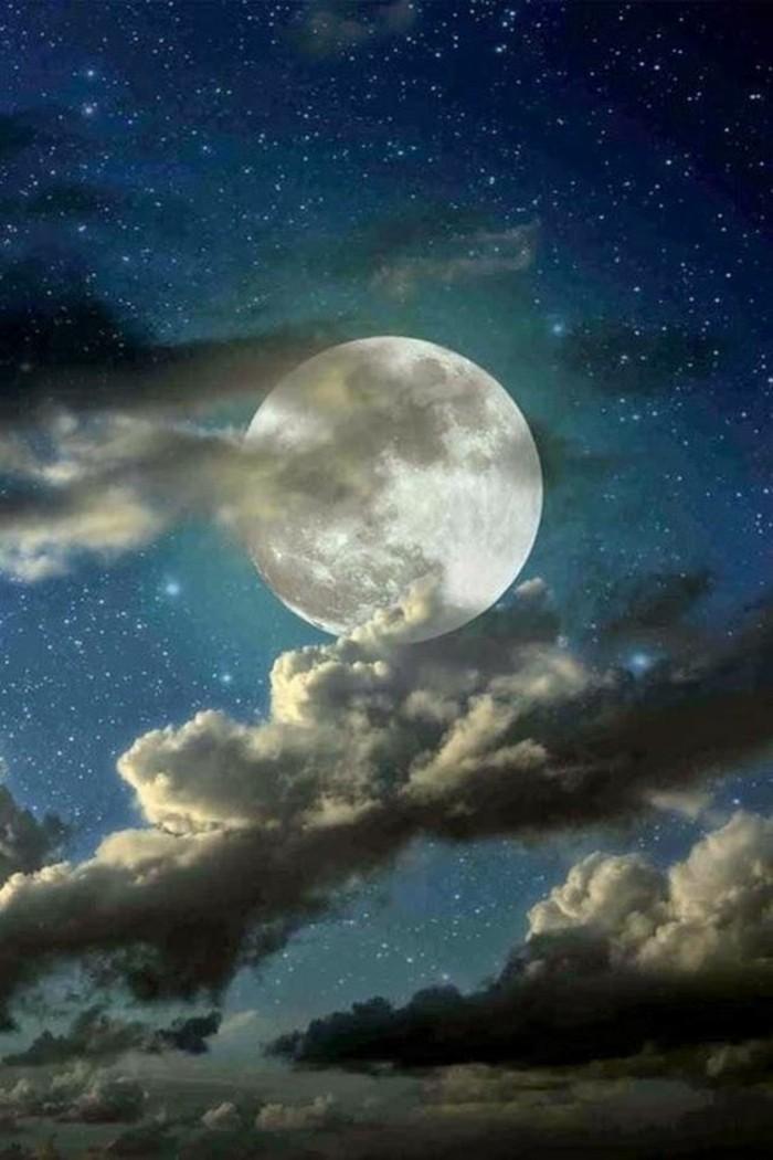chouette-ciel-etoilé-voir-le-ciel-avec-étoile-brillante-image