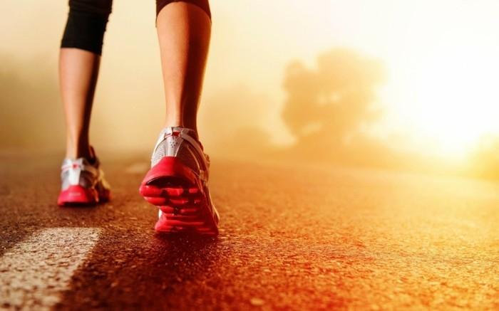 chouette-lever-du-soleil-photographie-cool-idée-go-run-gym
