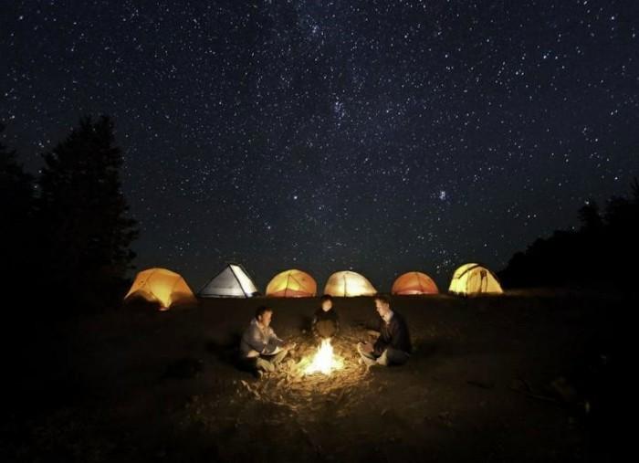 chouette-nuitée-ciel-etoilé-voir-le-ciel-avec-étoile-brillante-image