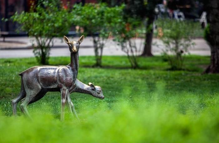 chouette-photo-de-park-sofia-bulgarie-en-europe-belles-photos
