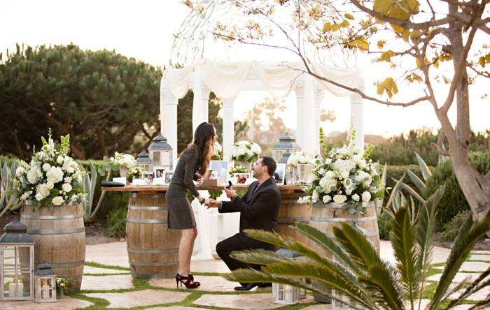 demande-en-mariage-romantique-et-originale-jardin