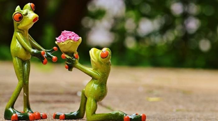 demande-en-mariage-romantique-et-originale-vert-frogs