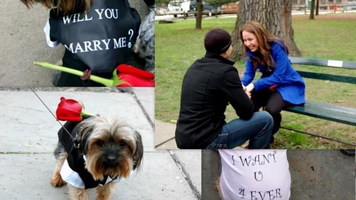 demande-en-mariage-romantique-et-originale-voir-comment