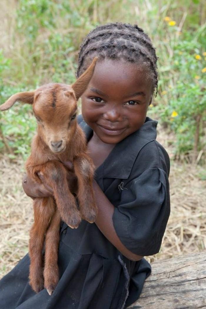 des-bébés-animaux-mignons-le-chevreau-sympathique-fille-jolie