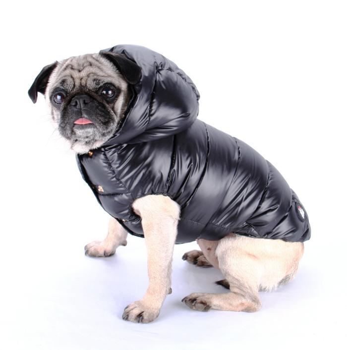 doudoune-pour-chien-chaude-et-trendy-mode-pour-animaux-de-compagnie