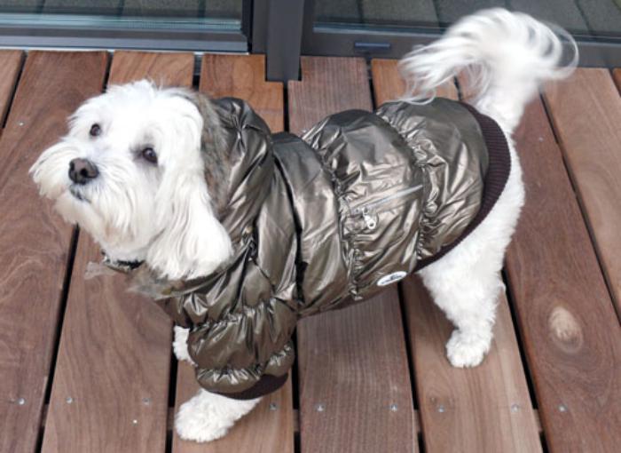 doudoune-pour-chien-couleur-bronzée