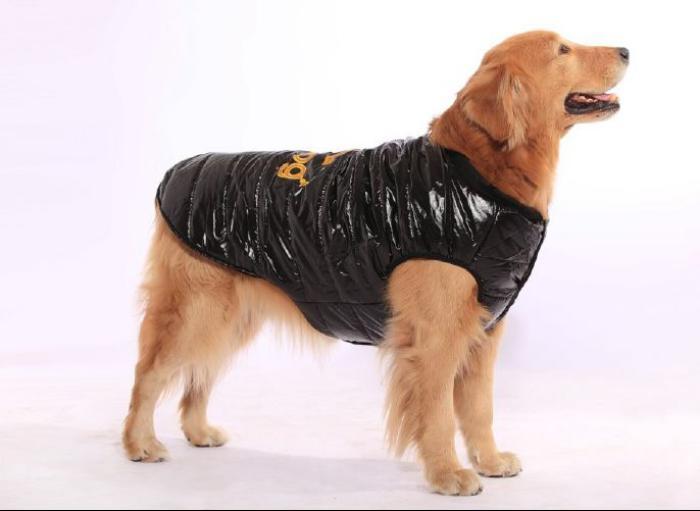doudoune-pour-chien-doudoune-noire-pour-grand-chien