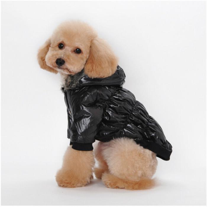 doudoune-pour-chien-habiller-le-chien-avec-goût