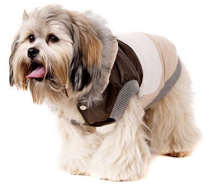 doudoune-pour-chien-habits-pour-grands-chiens