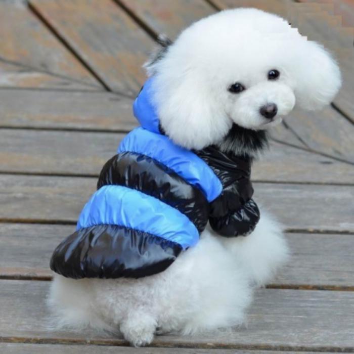 doudoune-pour-chien-mantea-coquet-en-deux-couleurs