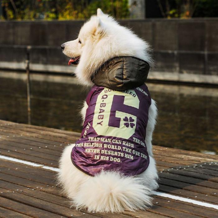 doudoune-pour-chien-manteau-de-chien-original-taille-moyenne