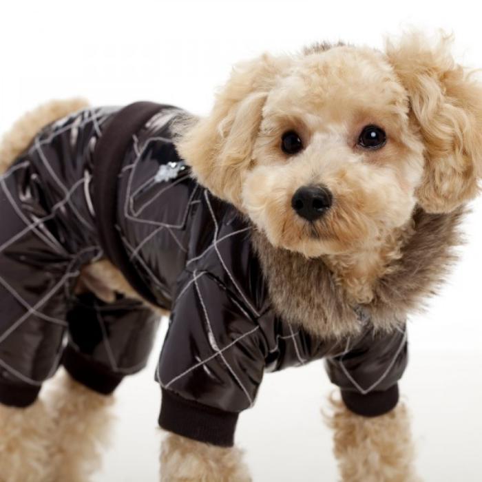doudoune-pour-chien-manteau-noir-imperméable