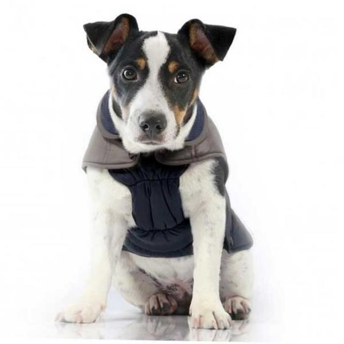 doudoune-pour-chien-manteau-pour-chien-vetement-chien