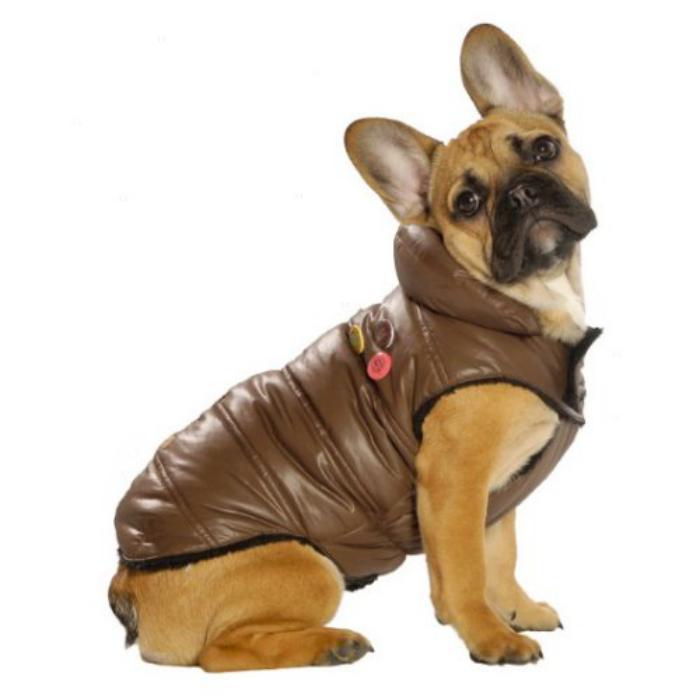 doudoune-pour-chien-manteaux-trendy-pour-petits-chiens