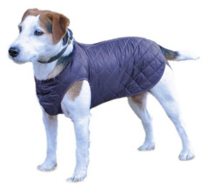 doudoune-pour-chien-matelassée-couleur-bleue