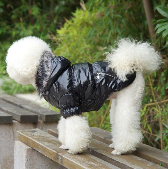 doudoune-pour-chien-noire-jolis-vetements-pour-chiens