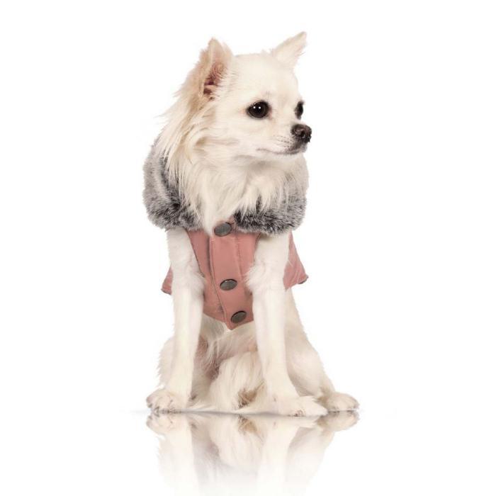 doudoune-pour-chien-petit-chien-blanc-avec-doudoune-rose-et-gris