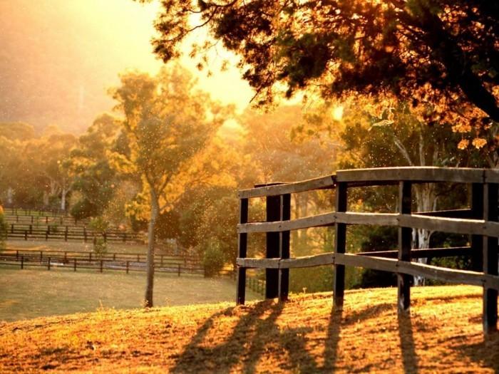 heure-lever-soleil-photographie-professionnelle-pont