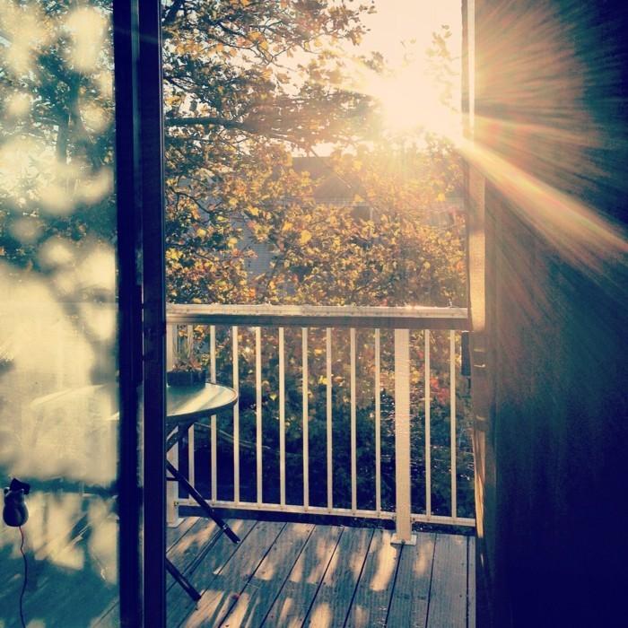 image-fond-ecran-image-nature-belle-au-lever-soleil-terasse
