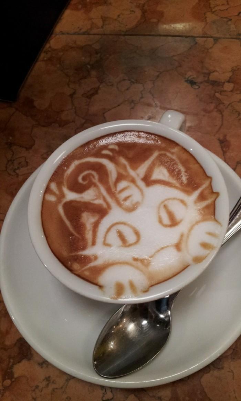 machine-a-cappuccino-belle-idée-coloré-chaton