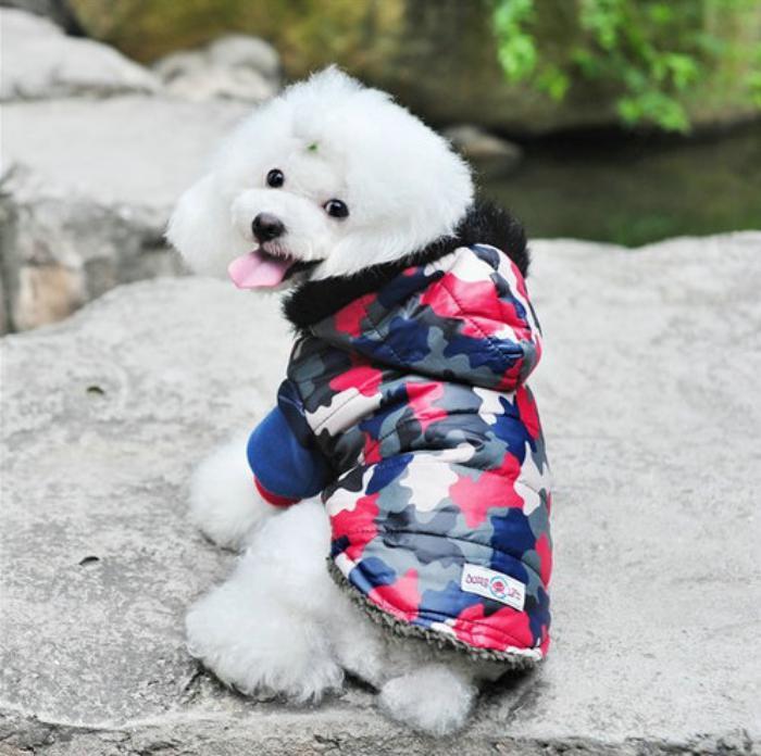 doudoune-pour-chien-rouge-camouflage