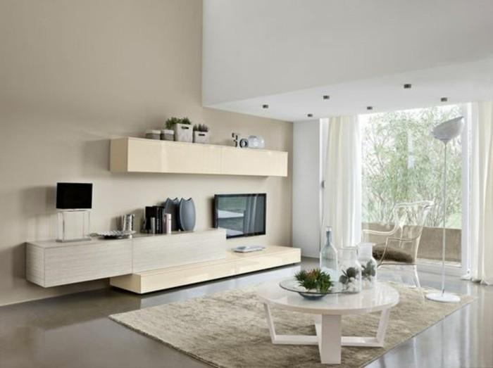 meubles-beiges-salon-avec-un-peu-de-meuble-pour-agrandir-sa-maison-tapis-beige