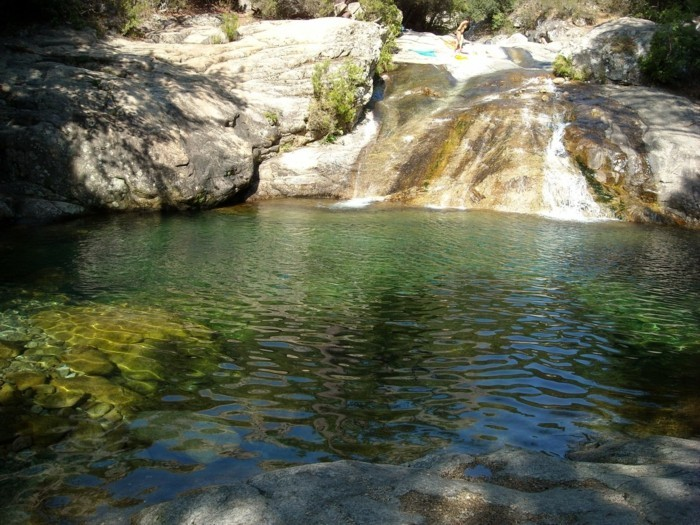Vous voulez profiter d 39 une piscine naturelle ces photos for Combloux piscine naturelle