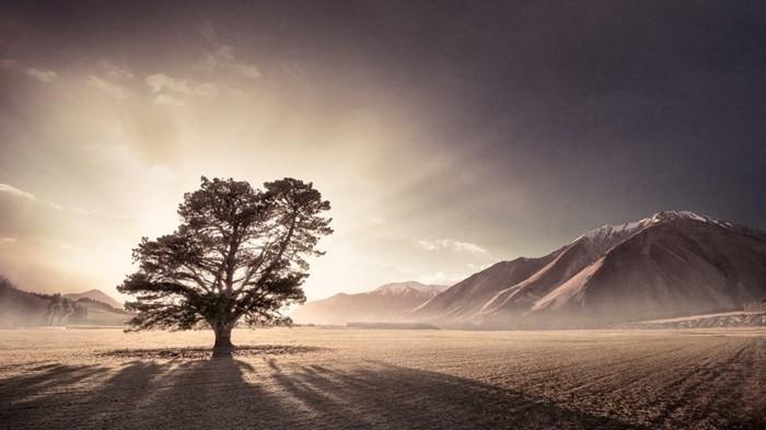 photographie-lever-du-soleil-magnifique-nature