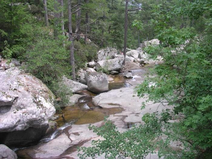 piscine-bassin-naturel-camping-piscine-naturelle