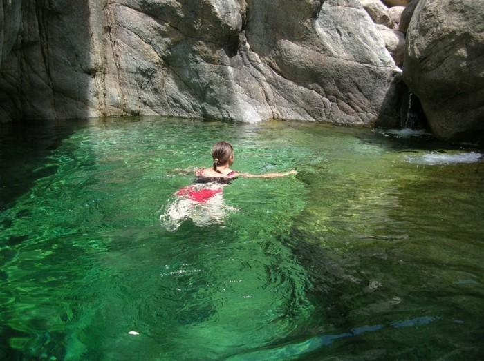 piscine-bassin-naturel-piscine-filtration-naturelle