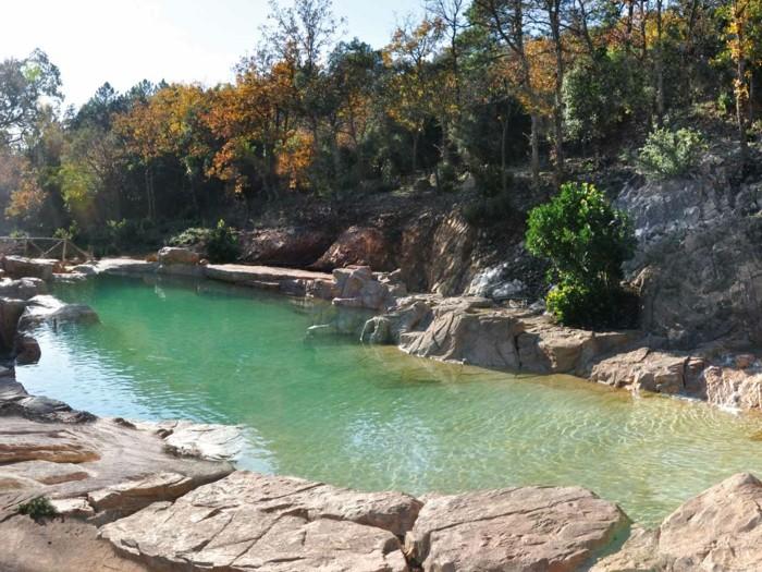 Vous voulez profiter d 39 une piscine naturelle ces photos for Bassin naturel piscine