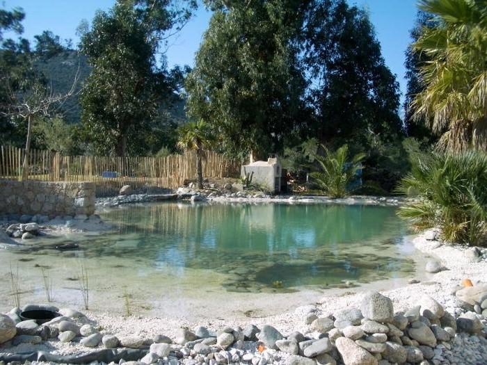piscine-naturelle-corse-piscine-naturelle-en-kit