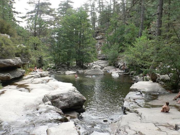 Vous voulez profiter d 39 une piscine naturelle ces photos for Prix d une piscine naturelle