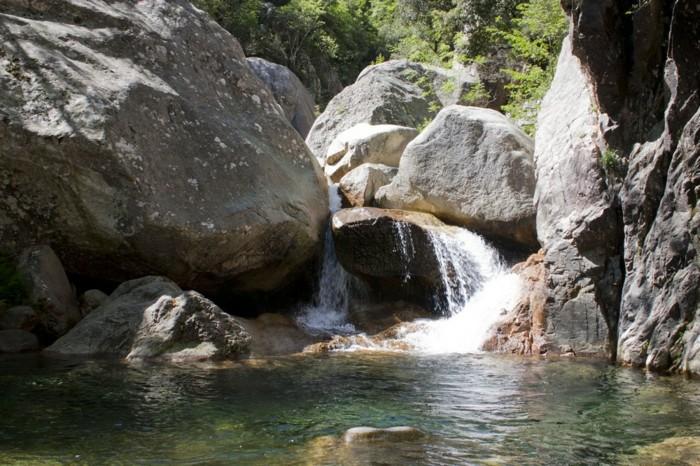 piscine-naturelle-var-piscine-eau-naturelle