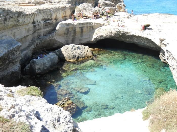 piscine-naturelles-piscine-naturelle-combloux