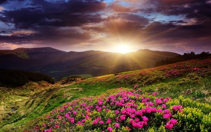 trop-cool-merveilleuse-photo-lever-soleil-photo-paysage