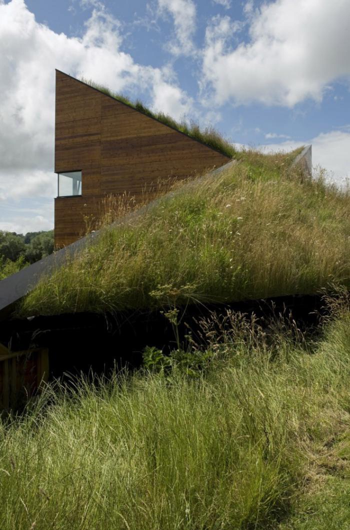 toiture-végétalisée-et-beaux-nuages-architecture-verte